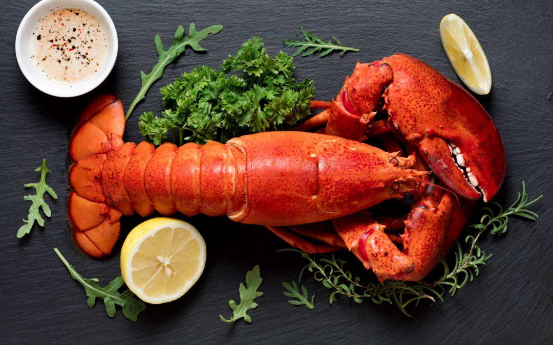 31. Juli bis 6. August – Kulinarisches Special – Hummer